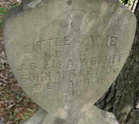 WRIGHT, JANIE - La Salle County, Louisiana | JANIE WRIGHT - Louisiana Gravestone Photos