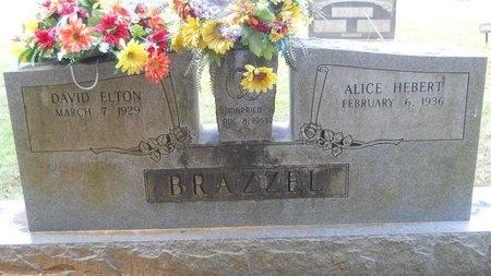 BRAZZEL, DAVID ELTON - Lincoln County, Louisiana | DAVID ELTON BRAZZEL - Louisiana Gravestone Photos