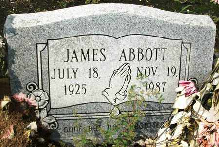 ABBOTT, JAMES - Livingston County, Louisiana   JAMES ABBOTT - Louisiana Gravestone Photos