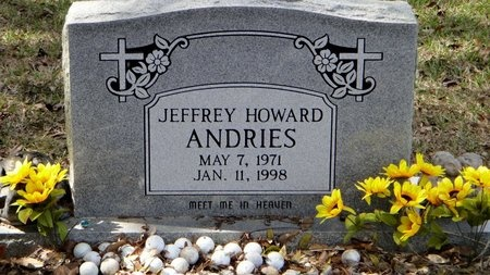 ANDRIES, JEFFREY HOWARD - Livingston County, Louisiana | JEFFREY HOWARD ANDRIES - Louisiana Gravestone Photos