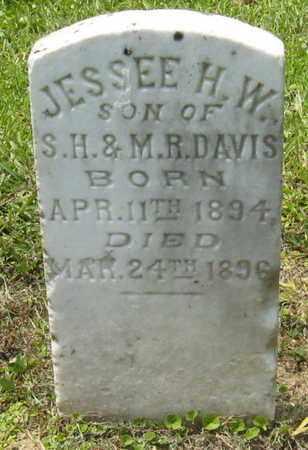 DAVIS, JESSEE H W - Livingston County, Louisiana | JESSEE H W DAVIS - Louisiana Gravestone Photos