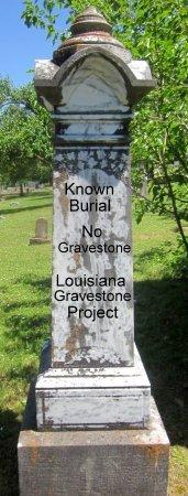 MCDONALD, WILLIAM D. - Livingston County, Louisiana | WILLIAM D. MCDONALD - Louisiana Gravestone Photos