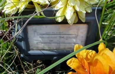 STOGNER, DONEL RAY - Livingston County, Louisiana   DONEL RAY STOGNER - Louisiana Gravestone Photos