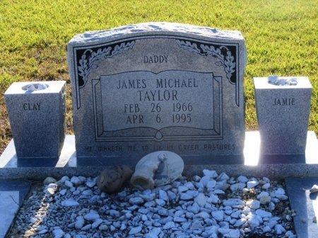 TAYLOR, JAMES MICHAEL - Livingston County, Louisiana | JAMES MICHAEL TAYLOR - Louisiana Gravestone Photos