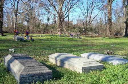 * OVERVIEW,  - Madison County, Louisiana |  * OVERVIEW - Louisiana Gravestone Photos