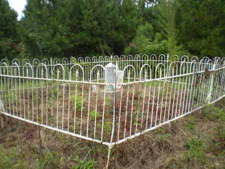 * OVERVIEW & GPS, ENTRANCE - Morehouse County, Louisiana   ENTRANCE * OVERVIEW & GPS - Louisiana Gravestone Photos