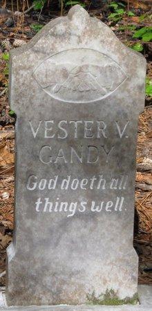 GANDY, VESTER V - Natchitoches County, Louisiana | VESTER V GANDY - Louisiana Gravestone Photos