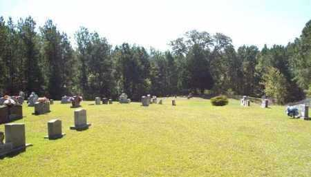 * OVERVIEW,  - Natchitoches County, Louisiana |  * OVERVIEW - Louisiana Gravestone Photos