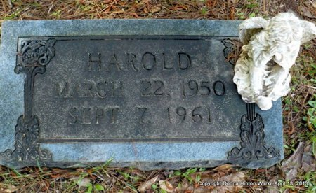 UNKNOWN, HAROLD - Natchitoches County, Louisiana | HAROLD UNKNOWN - Louisiana Gravestone Photos