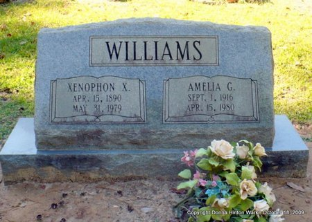 WILLIAMS, AMELIA NORVELLE - Natchitoches County, Louisiana   AMELIA NORVELLE WILLIAMS - Louisiana Gravestone Photos