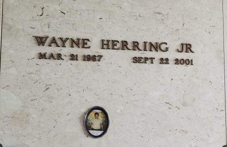 HERRING, WAYNE, JR - Orleans County, Louisiana | WAYNE, JR HERRING - Louisiana Gravestone Photos