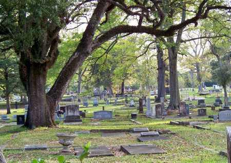* OVERVIEW, * - Rapides County, Louisiana | * * OVERVIEW - Louisiana Gravestone Photos