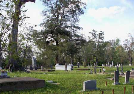 * OVERVIEW,  - Rapides County, Louisiana |  * OVERVIEW - Louisiana Gravestone Photos