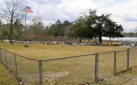 * OVERVIEW,  - Rapides County, Louisiana |  * OVERVIEW - Louisiana Gravestone Photos