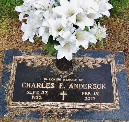 ANDERSON, CHARLES E - Rapides County, Louisiana | CHARLES E ANDERSON - Louisiana Gravestone Photos