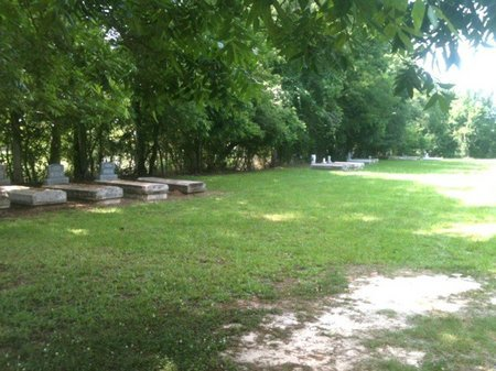 *OVERVIEW, * - Rapides County, Louisiana   * *OVERVIEW - Louisiana Gravestone Photos