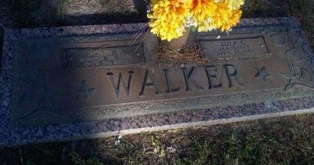 WALKER, JOHN HAMILTON - Rapides County, Louisiana | JOHN HAMILTON WALKER - Louisiana Gravestone Photos
