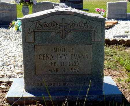 EVANS, CENA - Red River County, Louisiana   CENA EVANS - Louisiana Gravestone Photos