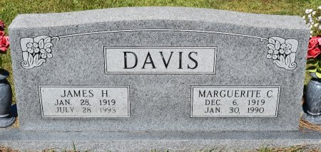 DAVIS, JAMES H - Sabine County, Louisiana | JAMES H DAVIS - Louisiana Gravestone Photos