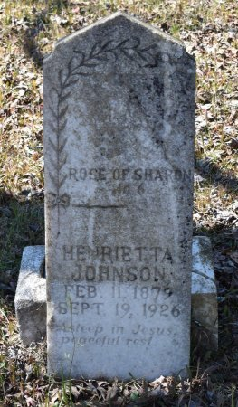 JOHNSON, HENRIETTA - Sabine County, Louisiana | HENRIETTA JOHNSON - Louisiana Gravestone Photos