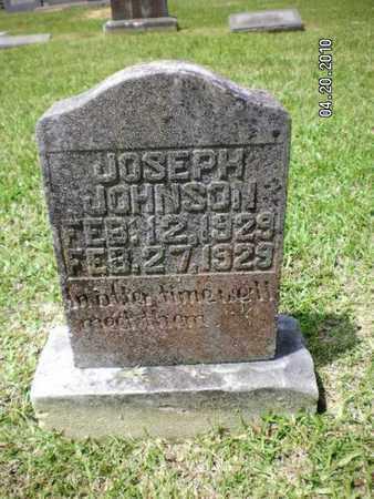 JOHNSON, JOSEPH - Sabine County, Louisiana | JOSEPH JOHNSON - Louisiana Gravestone Photos