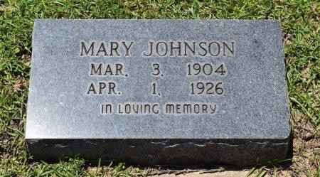 JOHNSON, MARY - Sabine County, Louisiana | MARY JOHNSON - Louisiana Gravestone Photos