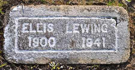 LEWING, ELLIS - Sabine County, Louisiana | ELLIS LEWING - Louisiana Gravestone Photos
