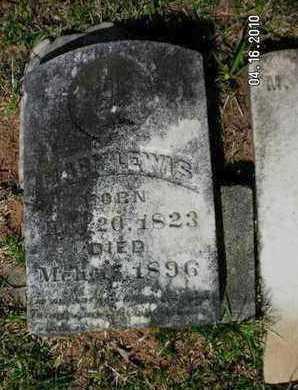 LEWIS, MARY - Sabine County, Louisiana | MARY LEWIS - Louisiana Gravestone Photos