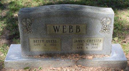 WEBB, JAMES CHESTER - Sabine County, Louisiana | JAMES CHESTER WEBB - Louisiana Gravestone Photos