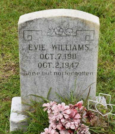 WILLIAMS, EVIE - Sabine County, Louisiana | EVIE WILLIAMS - Louisiana Gravestone Photos