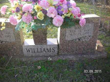 WILLIAMS, JOHN - Sabine County, Louisiana | JOHN WILLIAMS - Louisiana Gravestone Photos