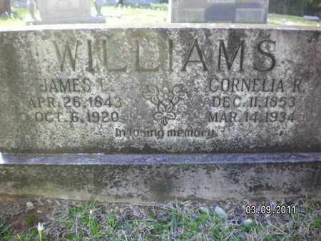 WILLIAMS, CORNELIA  R - Sabine County, Louisiana   CORNELIA  R WILLIAMS - Louisiana Gravestone Photos