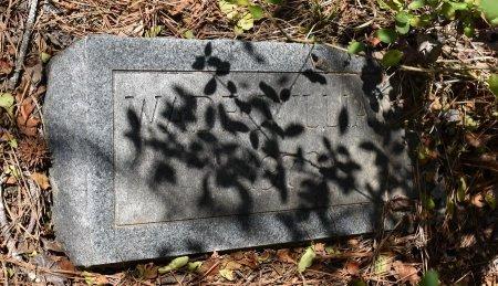 WILLIAMS, WADE - Sabine County, Louisiana   WADE WILLIAMS - Louisiana Gravestone Photos