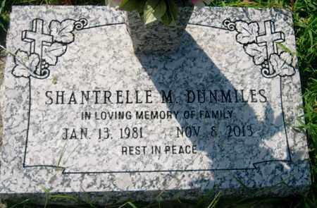 DUNMILES, SHANTRELLE M - St. Charles County, Louisiana | SHANTRELLE M DUNMILES - Louisiana Gravestone Photos