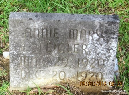 FEIGLER, ANNIE MARY - St. Helena County, Louisiana | ANNIE MARY FEIGLER - Louisiana Gravestone Photos