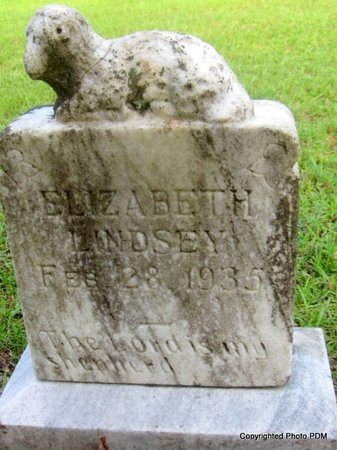 LINDSEY, ELIZABETH - St. Helena County, Louisiana | ELIZABETH LINDSEY - Louisiana Gravestone Photos