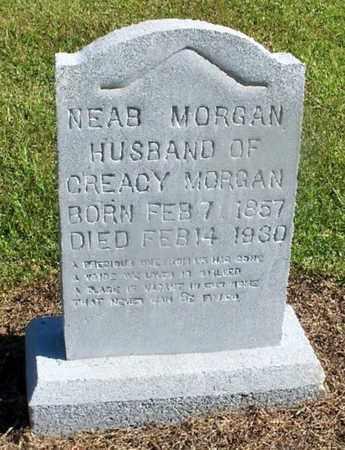 MORGAN, NEAB - St. Helena County, Louisiana | NEAB MORGAN - Louisiana Gravestone Photos