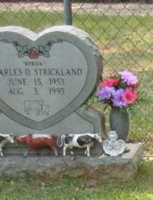 "STRICKLAND, CHARLES D ""STRICK"" - St. Helena County, Louisiana | CHARLES D ""STRICK"" STRICKLAND - Louisiana Gravestone Photos"