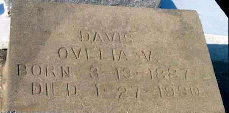 DAVIS, OVELIA V - St. Martin County, Louisiana | OVELIA V DAVIS - Louisiana Gravestone Photos