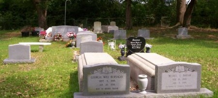 * OVERVIEW, * - St. Tammany County, Louisiana | * * OVERVIEW - Louisiana Gravestone Photos
