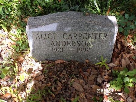 CARPENTER ANDERSON, ALICE - St. Tammany County, Louisiana | ALICE CARPENTER ANDERSON - Louisiana Gravestone Photos