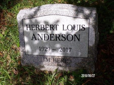 ANDERSON, HERBERT LOUIS - St. Tammany County, Louisiana   HERBERT LOUIS ANDERSON - Louisiana Gravestone Photos