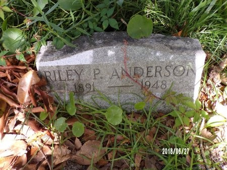ANDERSON, RILEY P - St. Tammany County, Louisiana | RILEY P ANDERSON - Louisiana Gravestone Photos