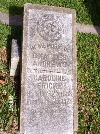 ANDREWS, CHARLES - St. Tammany County, Louisiana | CHARLES ANDREWS - Louisiana Gravestone Photos