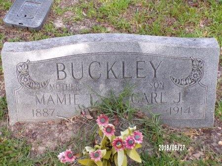 HODGSON BUCKLEY, MAMIE T - St. Tammany County, Louisiana | MAMIE T HODGSON BUCKLEY - Louisiana Gravestone Photos
