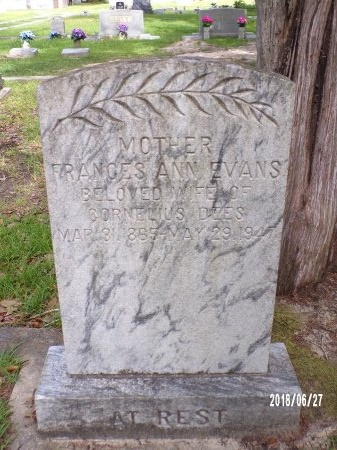 EVANS DEES, FRANCES ANN - St. Tammany County, Louisiana | FRANCES ANN EVANS DEES - Louisiana Gravestone Photos