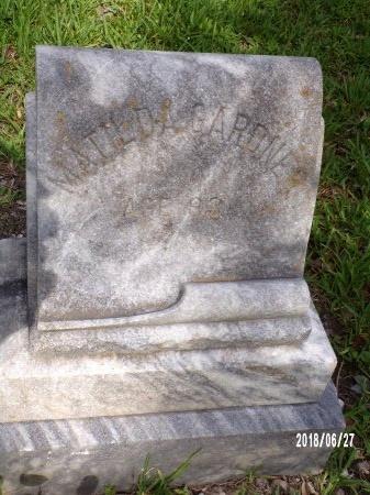GARDNER, MATILDA - St. Tammany County, Louisiana | MATILDA GARDNER - Louisiana Gravestone Photos