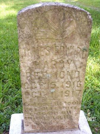 REDMOND, JAMES EDWARD HARDY - St. Tammany County, Louisiana | JAMES EDWARD HARDY REDMOND - Louisiana Gravestone Photos