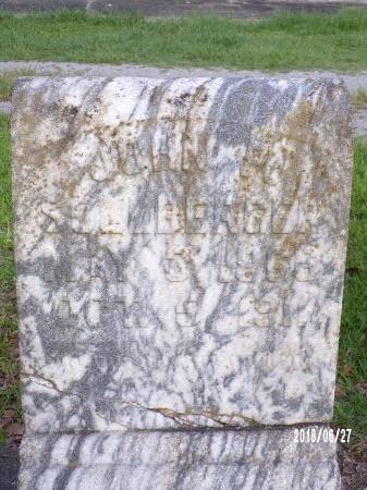 SOLLBERGER, JOHN P - St. Tammany County, Louisiana   JOHN P SOLLBERGER - Louisiana Gravestone Photos