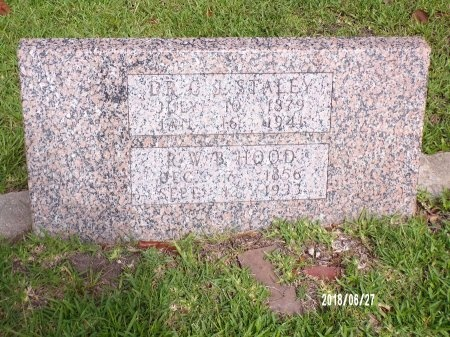 STALEY, C J, DR - St. Tammany County, Louisiana | C J, DR STALEY - Louisiana Gravestone Photos